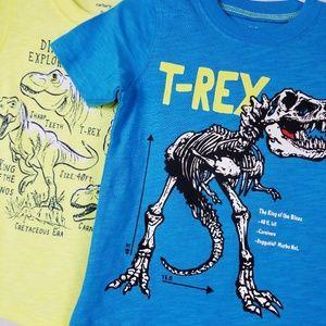 Carters Toddler Boys Tops Dinosaur T Rex T Shirt